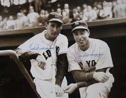 dbe9dd62396 Joe DiMaggio and Ted Williams Autographed Photo (16 x 20)