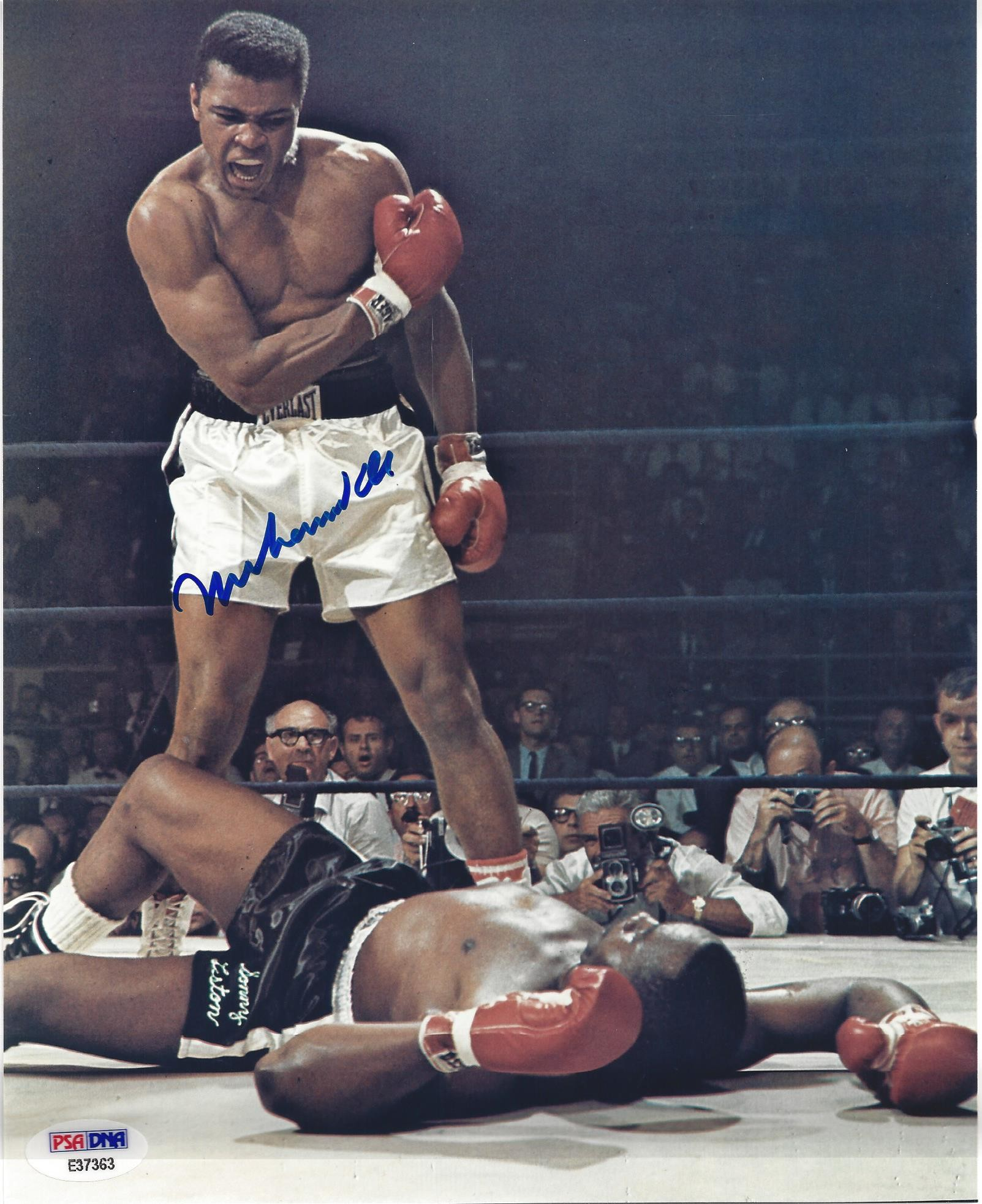 Signed 8x10 of Muhammad Ali after knocking down Sonny Liston in the ring